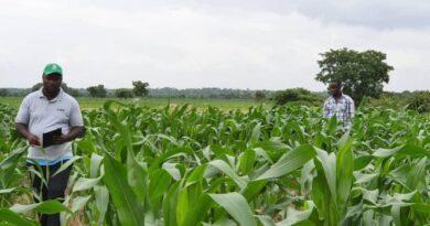 Farmers, OCP, Agribooster, Ghana