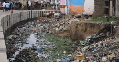 Ministry of Sanitation, Drains, Zoomlion, Accra