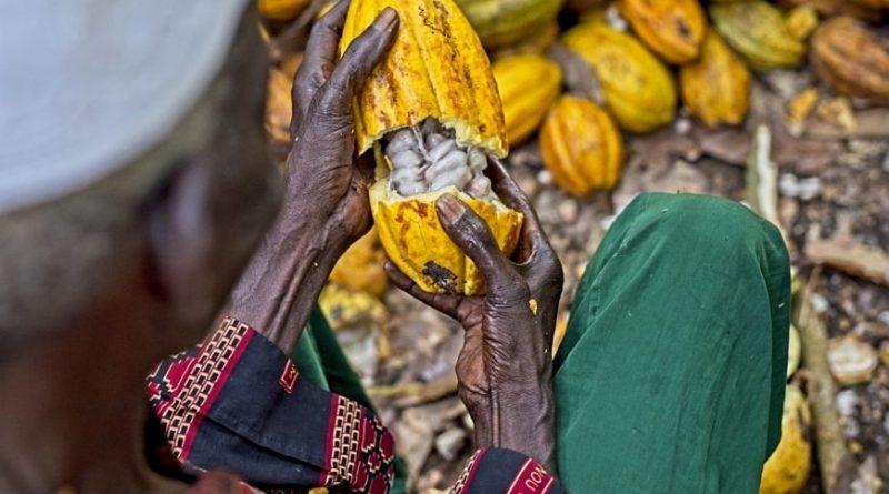Ghana, trade balance, BoG, Cocoa, oil